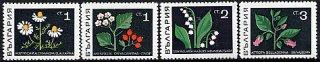 ブルガリアの切手・花・1969(8)
