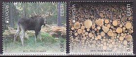 エストニア・ヨーロッパ・森林・2011(2)