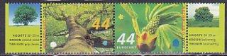 オランダ・春の木・2007(2)