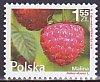 ポーランドの切手・ベリー・2011