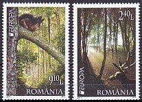 ルーマニア・ヨーロッパ・森林・2011(2)