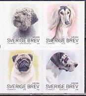 スウェーデンの犬・2008(4)