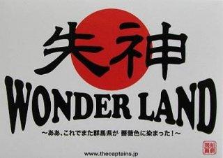 3rd LIVEDVD  「失神ワンダーランド〜ああ、これでまた群馬県が 薔薇色に染まった!〜」