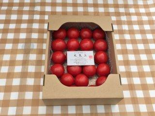 皆さま、お待たせ致しました期間限定 プレミアムフルーツトマト(1.2キロ前後 10個〜20個)