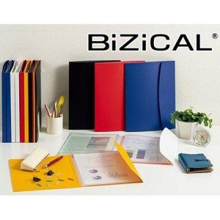 ライオン事務器 BiZiCAL ビジカル ホルダー用ブック 4ポケット HB-313B