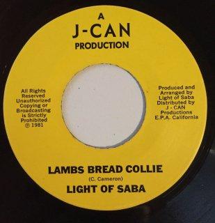 LIGHT OF SABA - LAMBS BREAD COLLIE