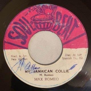 MAX ROMEO - MY JAMAICAN COLLIE