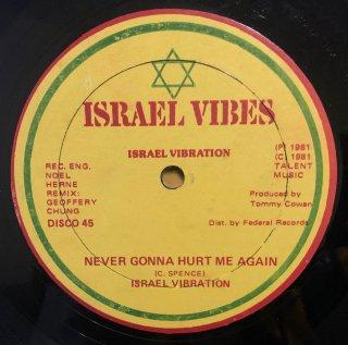 ISRAEL VIBRATION - NEVER GONNA HURT ME AGAIN