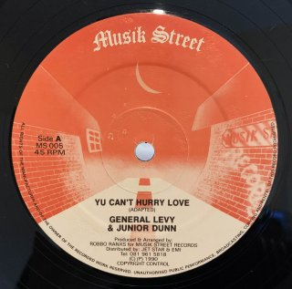 GENERAL LEVY & JUNIOR DUNN - YU CAN'T HARRY LOVE
