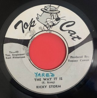 RICKY STORM - THE WAY IT IS
