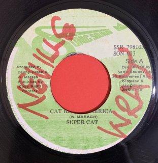 SUPER CAT - CAT REACH AMERICA