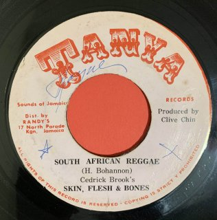 SKIN FLESH & BONES - SOUTH AFRICAN REGGAE