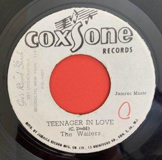 WAILERS - TEENAGER IN LOVE