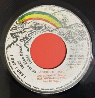 RAS MICHAEL - NUMBERED DAYS