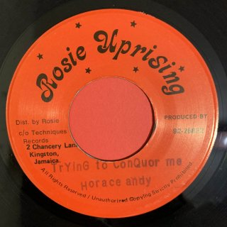 HORACE ANDY - TRYING TO CONQUOR ME