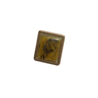 unknown Lion Pins  one size  Gold