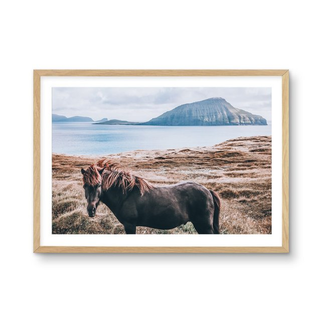 <img class='new_mark_img1' src='https://img.shop-pro.jp/img/new/icons43.gif' style='border:none;display:inline;margin:0px;padding:0px;width:auto;' />Island Horse (50×70cm)