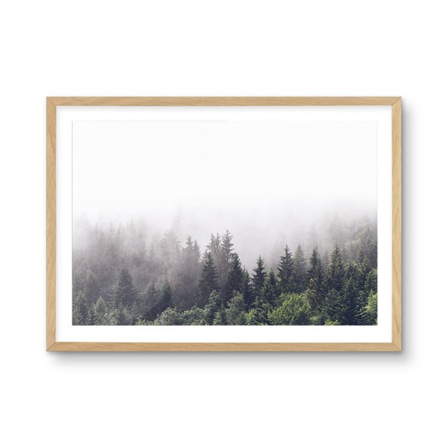 <img class='new_mark_img1' src='https://img.shop-pro.jp/img/new/icons43.gif' style='border:none;display:inline;margin:0px;padding:0px;width:auto;' />La Foret | Misty Forest LS (40×50cm)
