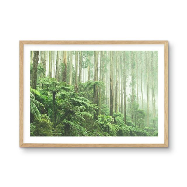 <img class='new_mark_img1' src='https://img.shop-pro.jp/img/new/icons43.gif' style='border:none;display:inline;margin:0px;padding:0px;width:auto;' />Misty Forest, Healsville Victoria (40×50cm)