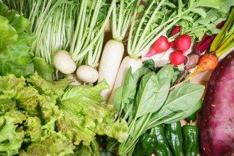 ふえのみち農園おまかせ野菜セット