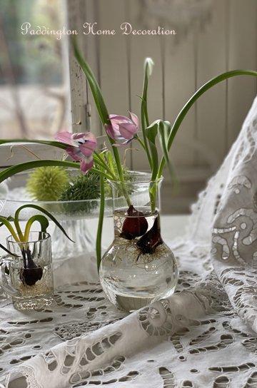 ガラスフラスコ R20201