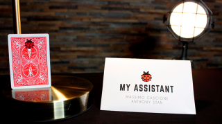 My Assistant by Massimo Cascione and Anthony Stan(てんとう虫のカード当て)