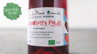 [2400] Strawberry Fields 2017 La Ferme de Mont Benault / ストロベリー・フィールド 2017 ル・フェルム・ド・モン・ブノー
