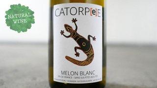 [2565] Tourlaudiere Catorpee Melon Blanc Sans Sulfites Ajoutes 2019 Domaine du La Tourlaudiere