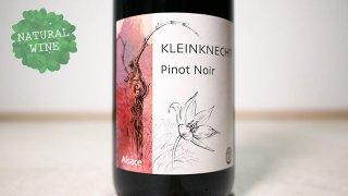 [2175] Pinot Noir 2018 Kleinknecht / ピノ・ノワール 2018 クラインクネヒト
