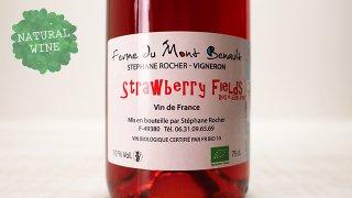 [2475] Strawberry Fields 2019 La Ferme de Mont Benault / ストロベリー・フィールド 2019 ル・フェルム・ド・モン・ブノー
