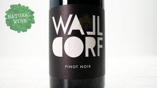 [2925] Pinot Noir 2017 Weingut Walldorf / ピノ・ノワール 2017 ヴァイングート・ヴァルドルフ