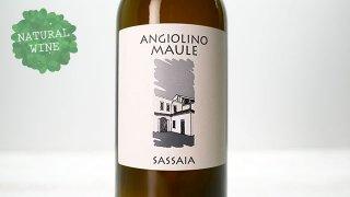 [2325] Sassaia 2019 La Biancara / サッサイア 2019 ラ・ビアンカーラ