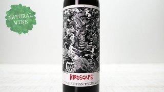 [3750] Birdscape Pink 2019 Christian Tschida / バードスケープ・ピンク 2019 クリスティアン・チダ