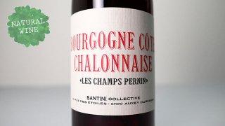 [3000] Bourgogne Cote Chalonnais Les Champs Pernin 2019 SANTINI COLLECTIVE / ブルゴーニュ コート・シャロネーズ 2019