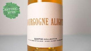 [3000] Bourgogne Aligote 2019 SANTINI COLLECTIVE / ブルゴーニュ・アリゴテ 2019 サンティニ・コレクティヴ