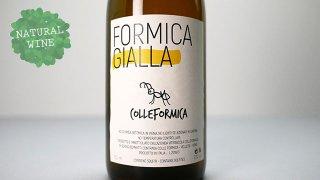 [2400] Formica Gialla 2019 Colleformica / フォルミカ・ジャッラ 2019 コッレフォルミカ