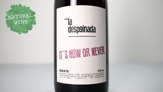 [2625]  IT'S NOW OR NEVER 2019 La despeinada / イッツ・ナウ・オア・ネヴァー 2019 ラ・デスペイナーダ