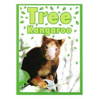 スギ☆カナ写真集 「Tree Kangaroo キノボリカンガルー」スギ☆カナ(杉浦かな子)著