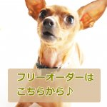 <img class='new_mark_img1' src='https://img.shop-pro.jp/img/new/icons25.gif' style='border:none;display:inline;margin:0px;padding:0px;width:auto;' />【オーダー用】20�幅首輪(ラミネート)
