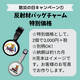 <img class='new_mark_img1' src='https://img.shop-pro.jp/img/new/icons29.gif' style='border:none;display:inline;margin:0px;padding:0px;width:auto;' />【10月末日まで/特別企画・受注制作】うちのコ反射材バッグチャーム(白or黒)【納期1か月】