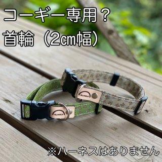 「光れ!コーギー」(緑orベージュ)2センチ幅首輪・名入れできます【単品】