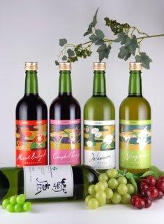 熊本ワインセットA(5本)