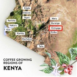 <img class='new_mark_img1' src='https://img.shop-pro.jp/img/new/icons14.gif' style='border:none;display:inline;margin:0px;padding:0px;width:auto;' />【お待たせしました】ケニア キリニャガ  AB ミトンドFW 中煎り 200g