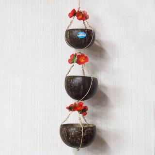 三段ココナッツ