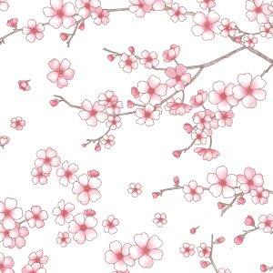 CHERRY BLOSSOMS (チェリーブロッサム/桜)