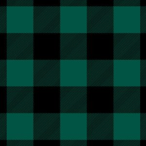 BLOCK CHECK(ブロックチェック・ブラック×グリーン)