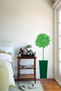 入荷待ち Citrus Tree (シトラスの木)Sour Apple/Dark Green (お取り寄せ予約商品)