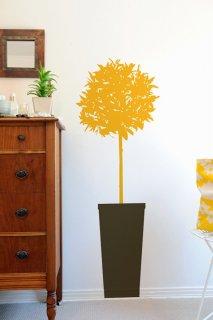 入荷待ち Citrus Tree (シトラスの木)Sunflower/Cocoa (お取り寄せ予約商品)