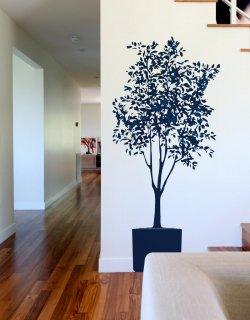 入荷待ち Olive Tree (オリーブの木)Charcoal/Graphite(お取り寄せ予約商品)