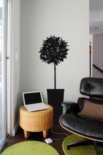 Citrus Tree(シトラスの木)チャコール/グラファイト